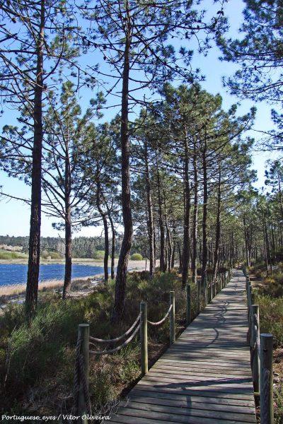 Lagoa_da_Ervedeira